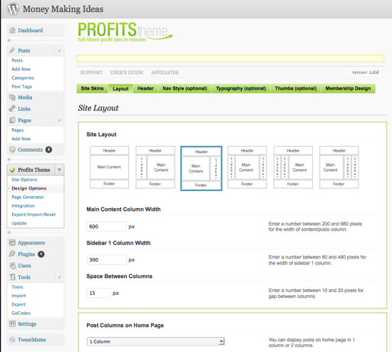 profits theme review